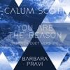 You Are the Reason (French Duet Version) - Single