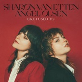 Sharon Van Etten - Like I Used To
