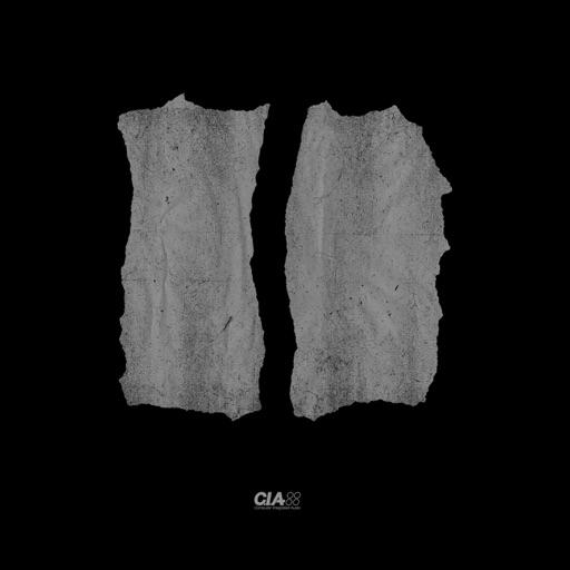 Fallen Angel (L-Side Remix) / Untouchable - Single by L-Side & Total Science