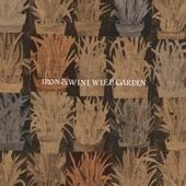 Iron & Wine - Autumn Town Leaves