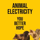 Animal Electricity - You Better Hope