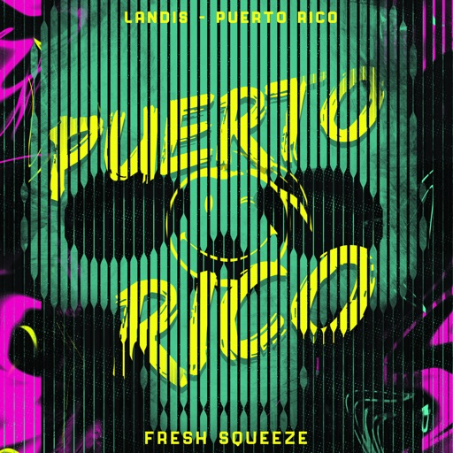 Art for Puerto Rico by Landis