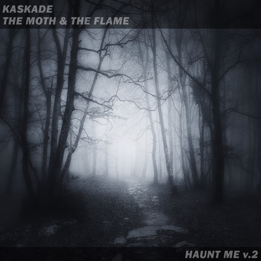 Haunt Me V.2 - Single by The Moth & The Flame & Kaskade