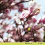 In Spring - EP