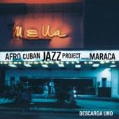 Afro Cuban Jazz Project - Tu Mi Delirio (feat. Maraca)