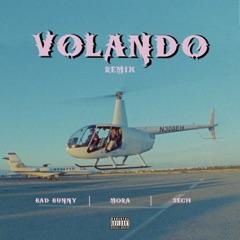 Volando (Remix)
