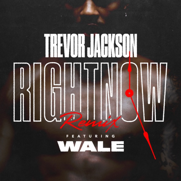 Right Now (Remix) [feat. Wale] - Single