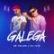 Galega - Zé Felipe & DJ Ivis letra