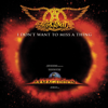Aerosmith - I Don't Want to Miss a Thing (From