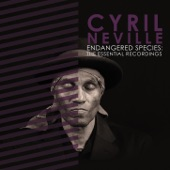 Cyril Neville - New Orleans Cookin'