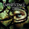 Evanescence - Thoughtless (Live from Le Zénith, France 2004) artwork