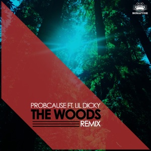 The Woods (feat. Lil Dicky) [Remix] - Single Mp3 Download