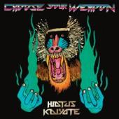 Hiatus Kaiyote - The Lung
