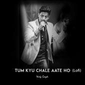 [Download] Tum Kyu Chale Ate Ho (Lofi) MP3