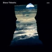 Steve Tibbetts - Sangchen Rolpa