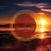 In Search of Sunrise 14 - Markus Schulz, Gabriel & Dresden & Andy Moor
