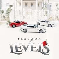 Flavour - Levels - Single
