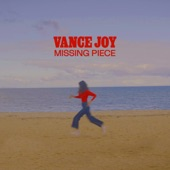 Vance Joy - Missing Piece