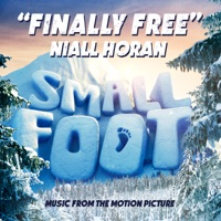 NIALL HORAN - Finally Free Chords and Lyrics