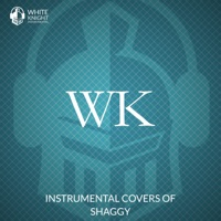 White Knight Instrumental - Instrumental Covers of Shaggy - EP