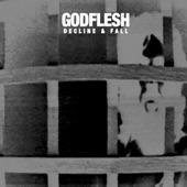 Godflesh - Ringer