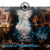 Flight of the Buzzard