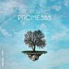 Funky - Promesas (feat. Indio Omar) ilustración