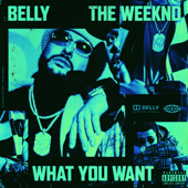 What You Want (feat. The Weeknd) - Belly