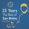 Zain Bhikha - Can't Take It With You