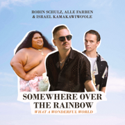 Somewhere Over the Rainbow / What a Wonderful World - Robin Schulz, Alle Farben & Israel Kamakawiwo'ole