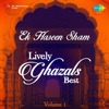 Ek Haseen Sham Best of Lively Ghazals Vol 1 Single