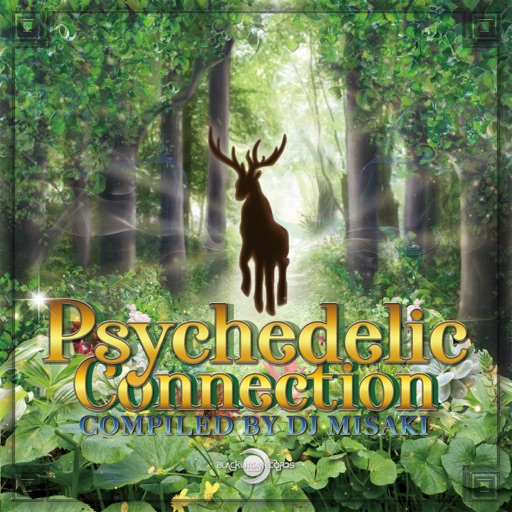 Psychedelic Connection (Compiled by Dj Misaki) by Various Artists