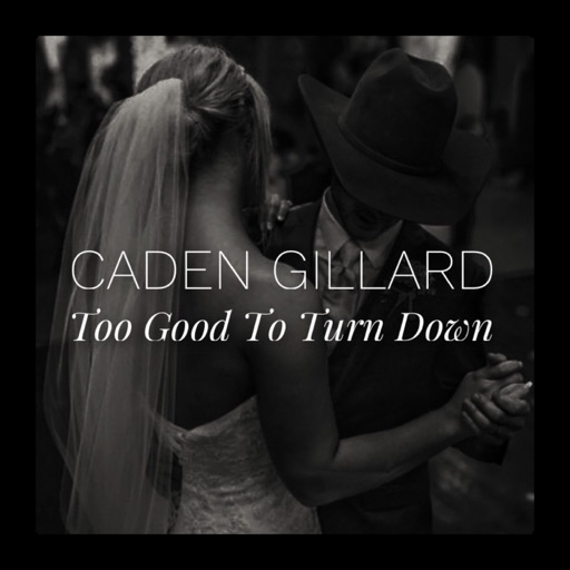 Art for Too Good to Turn Down by Caden Gillard