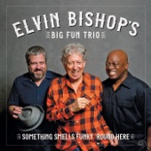 ELVIN BISHOP'S BIG FUN TRIO - (Your Love Keeps Lifting Me) Higher and Higher