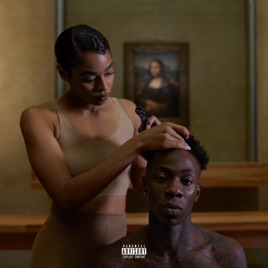 Image result for the carters everything is love