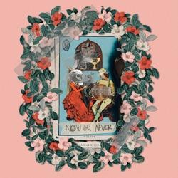 View album Halsey & R3hab - Now or Never (R3hab Remix) - Single
