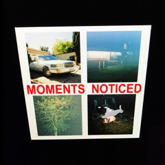Moments Noticed