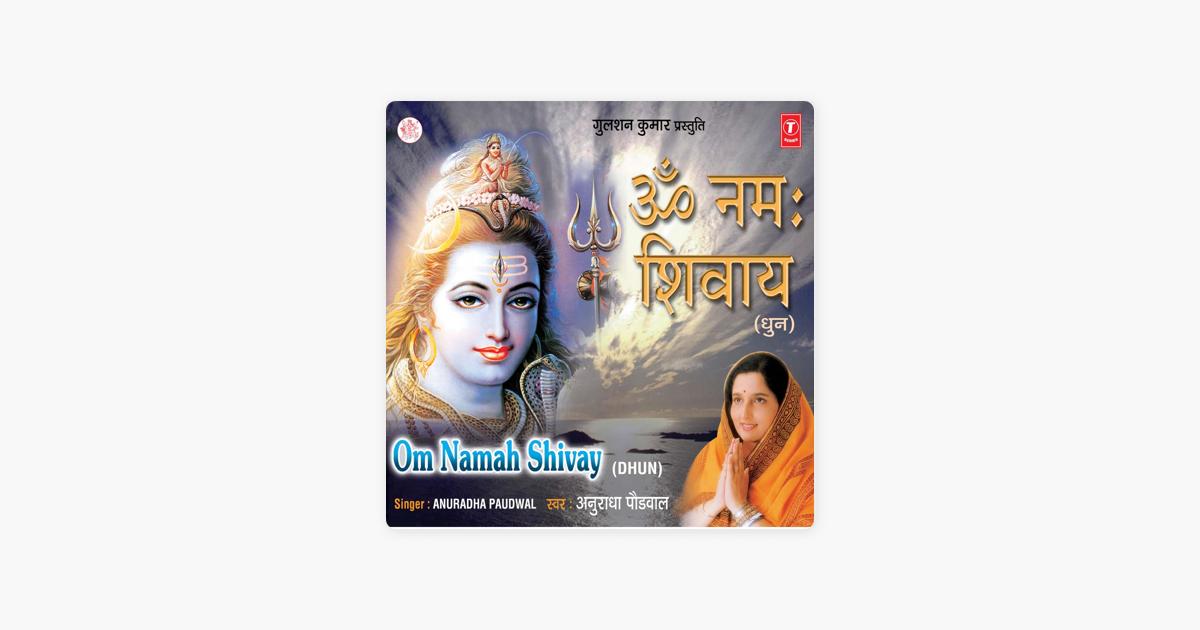 Om Namah Shivay by Anuradha Paudwal & Pankaj Bhatt on Apple
