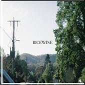 RICEWINE - Maybe