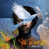 The Traveller (Special Edition), Baaba Maal