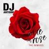 La vie en rose (Remixes), DJ Antoine