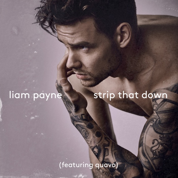 Cover art for Strip That Down