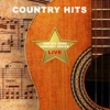 The Big Bang Concert Series: Country Hits Live, Kenny Loggins, LeAnn Rimes & Ashford & Simpson