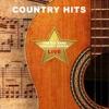 The Big Bang Concert Series Country Hits Live