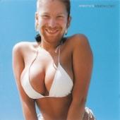 Aphex Twin - Windowlicker [Chosen by fans on Warp20.net]