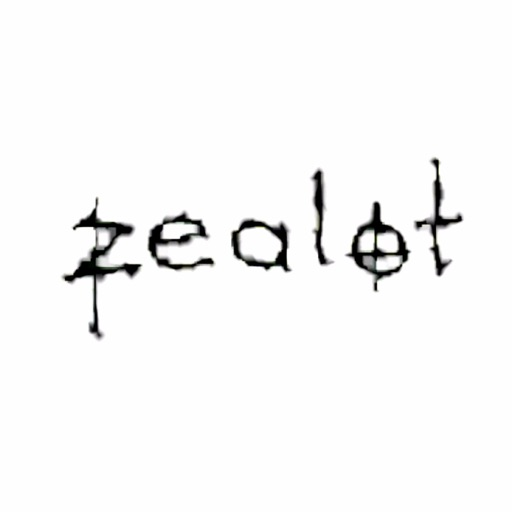 Cover image of Zealot