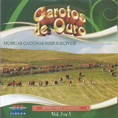 Músicas Gaúchas Inesquecíveis, Vol. 3 - Garotos de Ouro