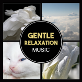 Gentle Relaxation Music – Calming White Noise, Soothing Nature Sounds for Moment of Silence, Deep Relaxation and Better Sleep