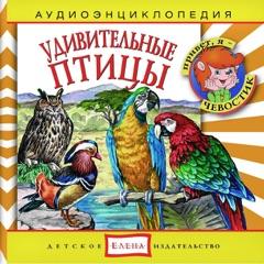 Аудиоэнциклопедия. Удивительные птицы