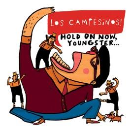 Los Campesinos!: You! Me! Dancing!
